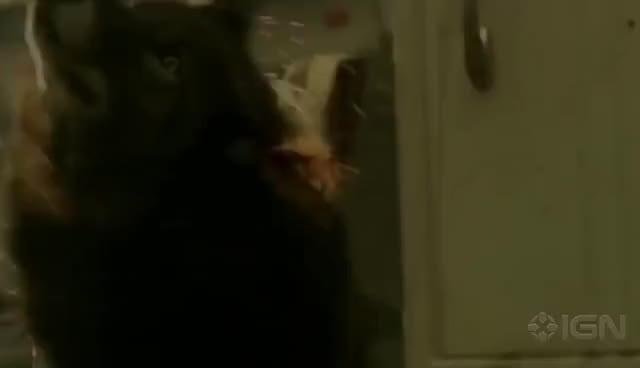 Watch Hemlock Grove GIF on Gfycat. Discover more werewolf GIFs on Gfycat