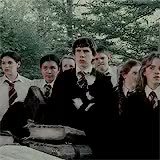 Watch and share Philosopher's Stone GIFs and Prisoner Of Azkaban GIFs on Gfycat