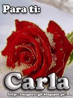Watch and share Hermosa Rosa Roja Con Brillos Dorados Y Un Fondo Blanco GIFs on Gfycat