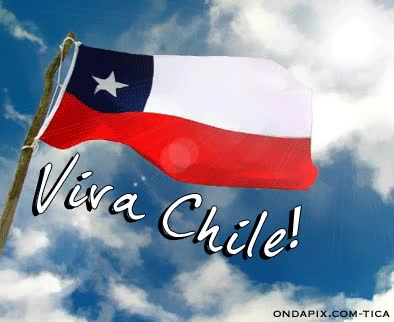 Watch Chile GIF on Gfycat. Discover more related GIFs on Gfycat