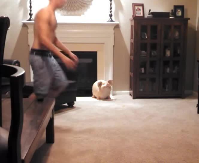 BetterEveryLoop, funny, thecatdimension, Kitten's plan doesn't go accordingly (reddit) GIFs