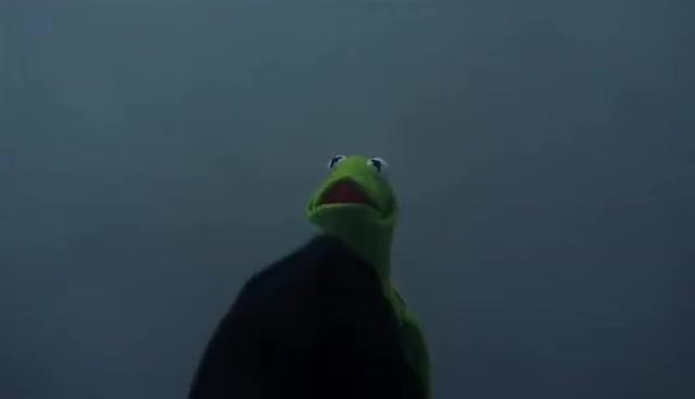 Watch Kermit vs. Constantine (Dark Kermit) GIF on Gfycat. Discover more related GIFs on Gfycat