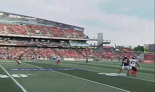Watch and share Alouettes GIFs and Redblacks GIFs by Archley on Gfycat