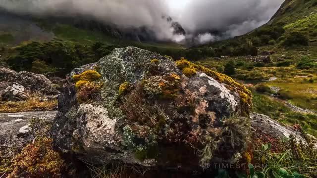Watch and share Naturegifs GIFs by joffas11 on Gfycat