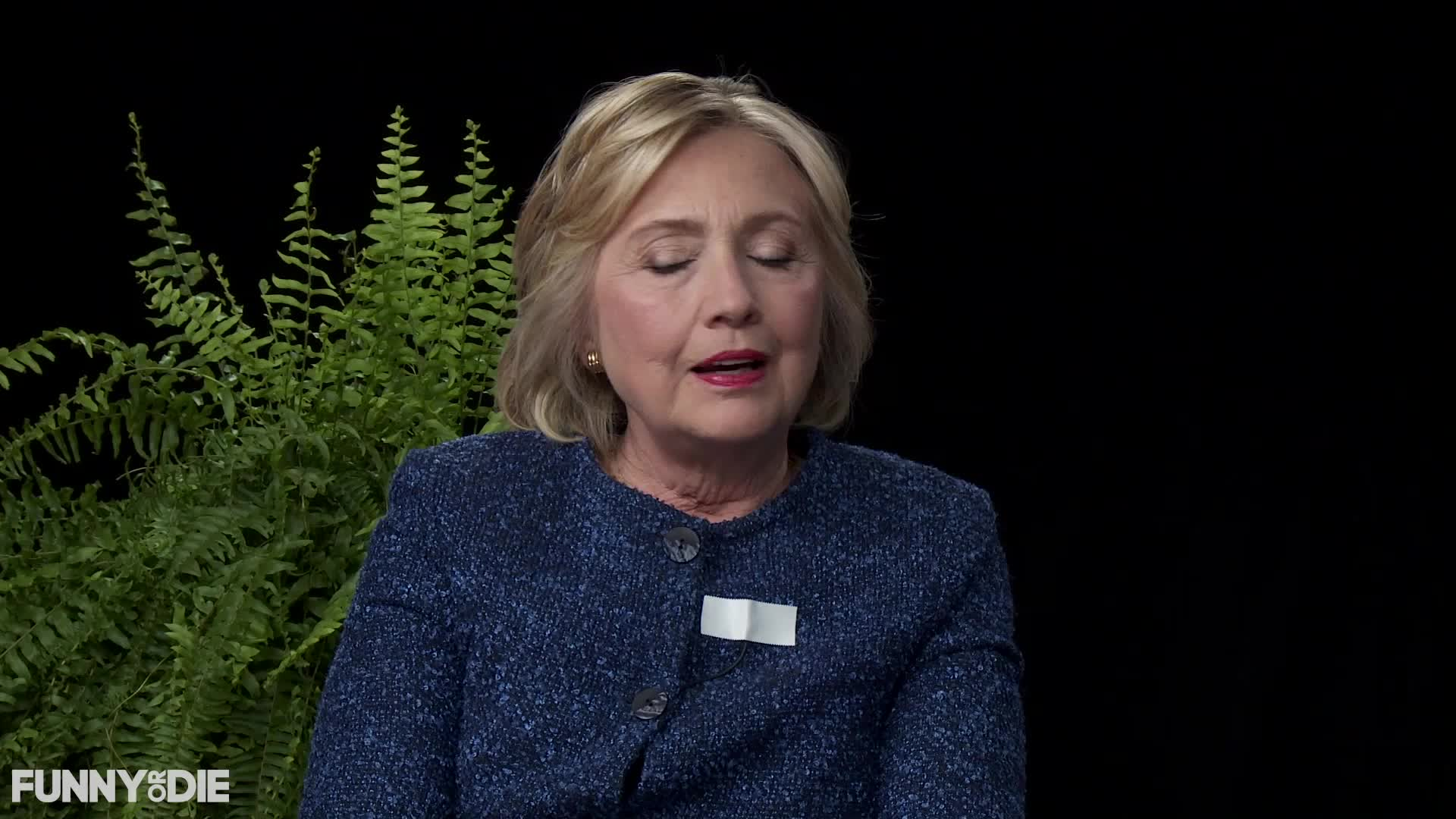 SMH, between two ferns, between2ferns, betweentwoferns, fod, funny or die, hillary clinton, hillaryclinton, regrets, zach galifianakis, Regrets - Between Two Ferns with Hillary Clinton GIFs