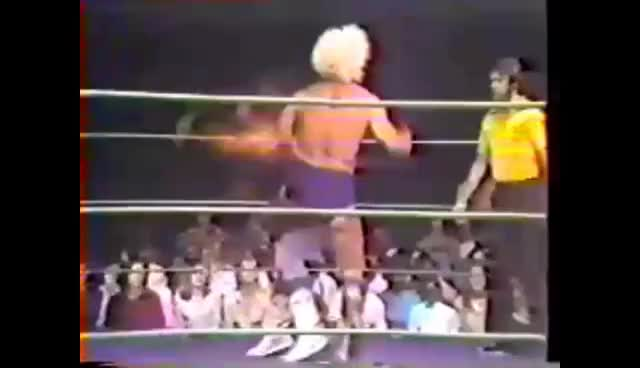 4a4dfd69 Watch Ric Flair Chop GIF on Gfycat. Discover more related GIFs on Gfycat