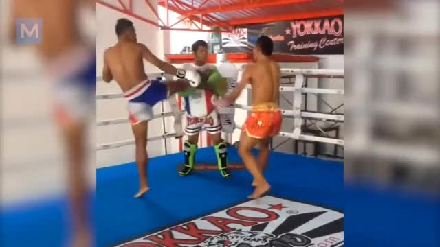 Watch Saenchai Muay Thai Training | Muscle Madness GIF on Gfycat. Discover more All Tags, Conditioning, Kickboxing, boxing, buakaw, mma, motivation, muscle, saenchai, workout GIFs on Gfycat