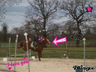 Watch and share Gif Cheval Saut D'obstacle GIFs on Gfycat
