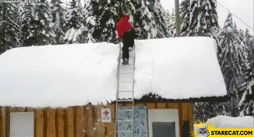 Watch and share Roof Snow Removal Expert GIFs on Gfycat