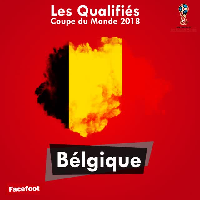 Watch and share GIF-coupe-du-monde GIFs on Gfycat