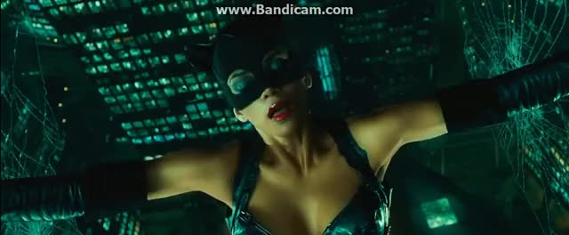 Watch and share Catwoman - Catwoman Vs Laurel Hedear GIFs on Gfycat