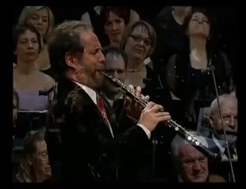 Watch and share Oboe GIFs on Gfycat