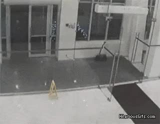 Watch Running into a wall GIF on Gfycat. Discover more related GIFs on Gfycat