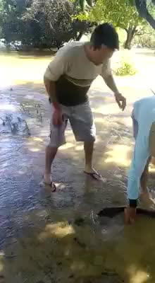 Watch Idiot walks across water slide [X-post /r/instant_regret] (reddit) GIF on Gfycat. Discover more BetterEveryLoop, Instantregret, Whatcouldgowrong GIFs on Gfycat