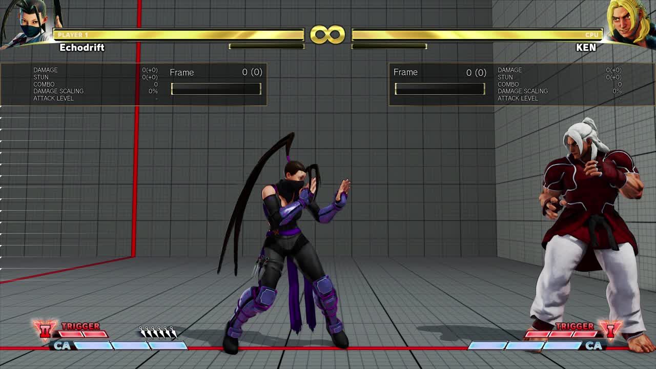 StreetFighter, Late release GIFs