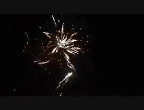 Watch Screamin GIF on Gfycat. Discover more Screamin GIFs on Gfycat