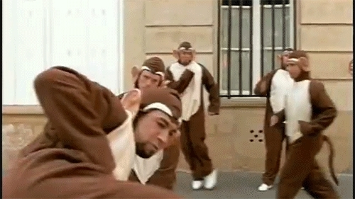 gfycatdepot, lastimages, I appreciate your input [Bloodhound Gang The Bad Touch 1999 Hooray for Boobies music video monkey cosplay costume sarcasm sarcastic not really] (reddit) GIFs