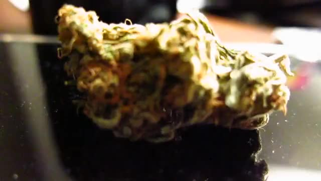 Watch Bud GIF by @veruus on Gfycat. Discover more related GIFs on Gfycat