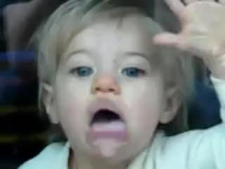 Watch and share Window Licker GIFs on Gfycat
