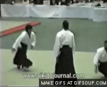 steven seagal aikido GIFs
