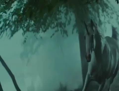 Watch Blade Runner - Unicorn GIF on Gfycat. Discover more bladerunner, unicorn GIFs on Gfycat