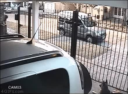 Watch and share Robber GIFs on Gfycat