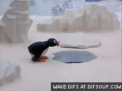 Watch and share Noot GIFs on Gfycat