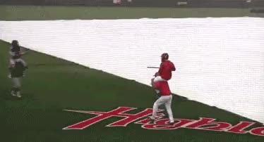 Watch and share What's The Funniest Sports Gif? : AskReddit GIFs on Gfycat
