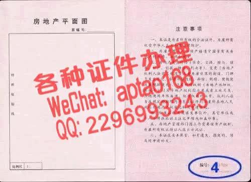 Watch and share 6euci-青岛农业大学海都学院毕业证办理V【aptao168】Q【2296993243】-t7hp GIFs by 办理各种证件V+aptao168 on Gfycat