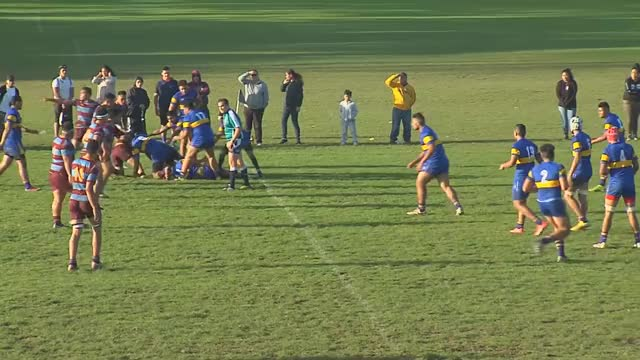 Watch and share Auckland 1st Xv Tv GIFs and Auckland Rugby GIFs by renoraines on Gfycat
