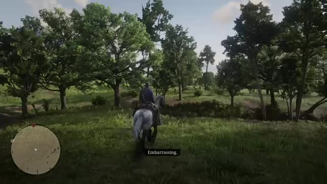 Watch this GIF by Gamer DVR (@xboxdvr) on Gfycat. Discover more Cheeny23, RedDeadRedemption2, xbox, xbox dvr, xbox one GIFs on Gfycat
