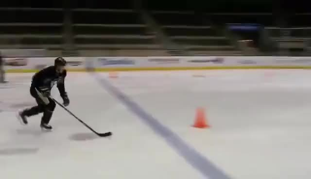 Watch and share Crosby GIFs and Sidney GIFs on Gfycat