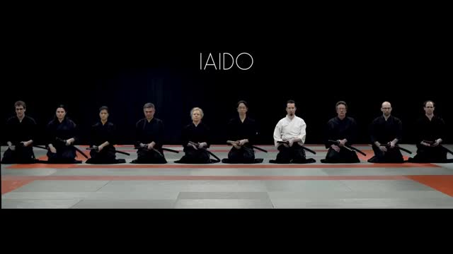 Watch Iaido GIF on Gfycat. Discover more related GIFs on Gfycat
