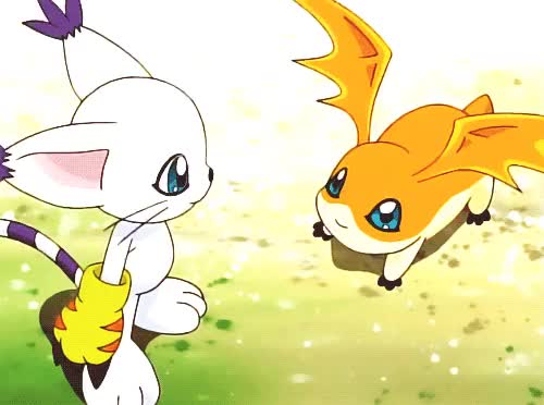 Watch and share Patamon 02 GIFs and Tailmon 02 GIFs on Gfycat