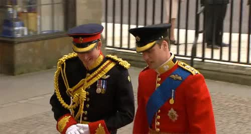 Watch this prince harry GIF on Gfycat. Discover more related GIFs on Gfycat