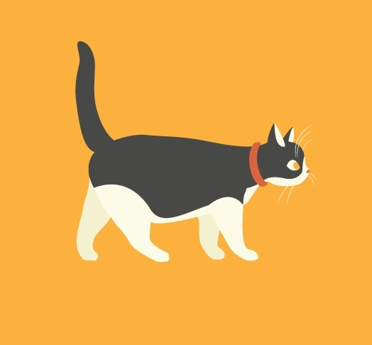 catgifs, Walking Gala GIFs