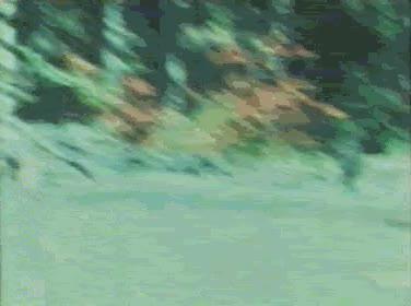 Watch and share Bigfoot GIFs on Gfycat
