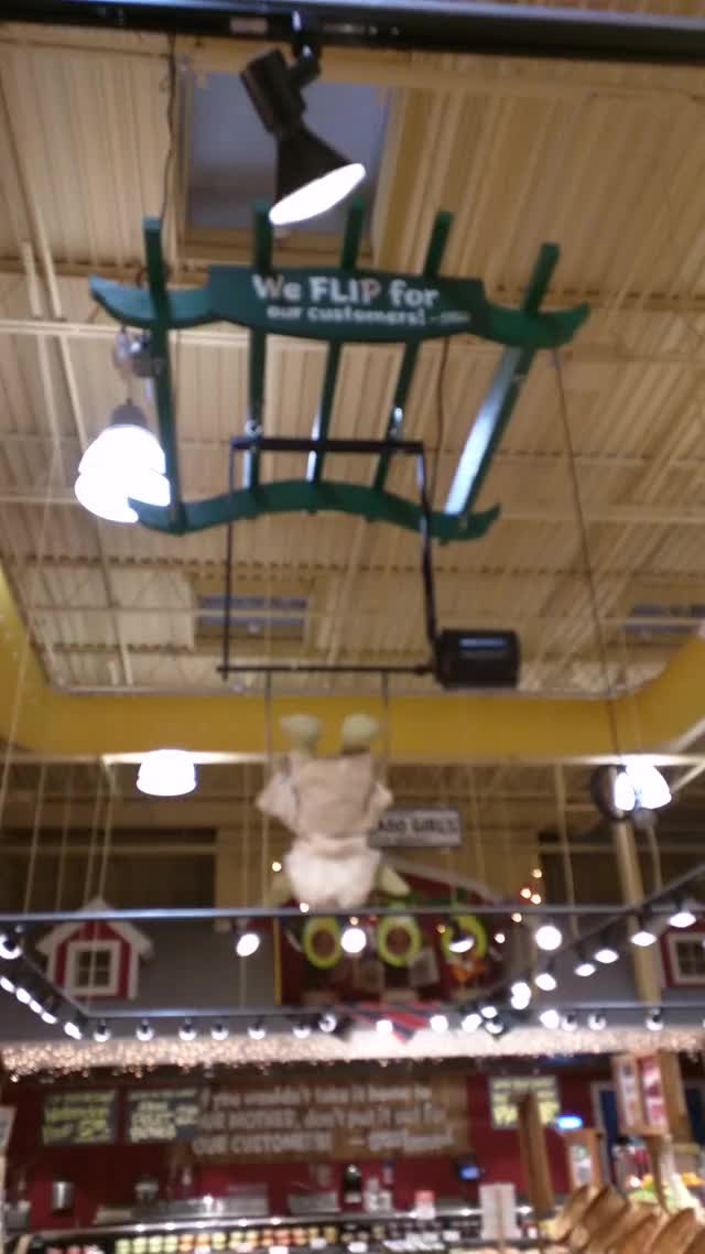 Watch and share Yoda On A Trapeze GIFs by revwaldo1 on Gfycat