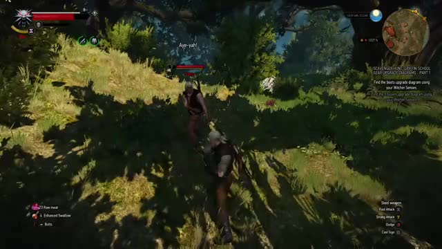 Watch and share Witcher 3 GIFs by Patrick on Gfycat