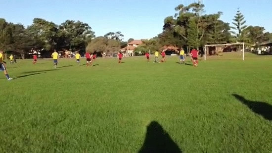 GoalKeepers, goalkeepers, Save I made while down 1-0 in the second half on the weekend (reddit) GIFs