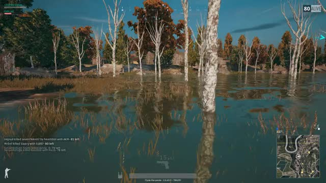 Watch PLAYERUNKNOWN'S BATTLEGROUNDS 2017.11.18 GIF by Clydethepanda (@clydethepanda) on Gfycat. Discover more pubg GIFs on Gfycat