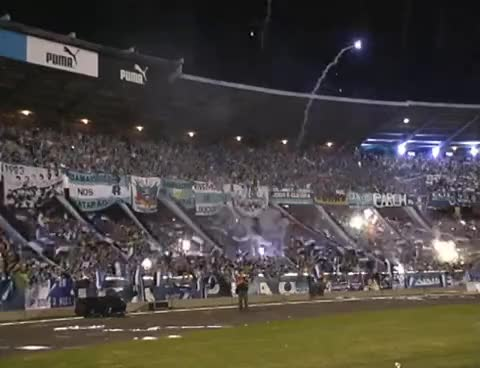 Watch and share Geral Do Gremio GIFs and Tricolor GIFs on Gfycat