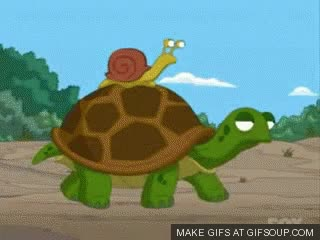 Watch and share Family Guy Snail On Turtle GIFs on Gfycat