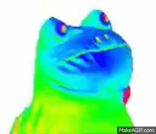Watch and share Rainbow Frog Hour How Rainbow Frog GIFs on Gfycat