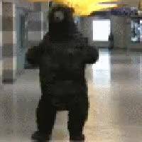 Watch and share Bruins Bear Hat Photo: Boston Bruins Dancing Bear 17257493ZMhNQbQ_zpsd1bf80bc.gif GIFs on Gfycat