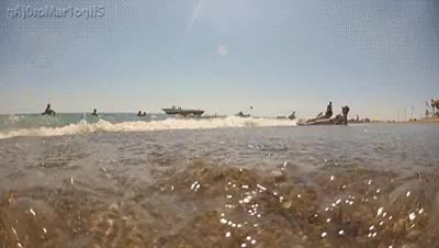 Watch and share The Coast Is Clear GIFs on Gfycat