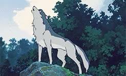 Watch brianna lyn. GIF on Gfycat. Discover more 365 movie challenge, 365 movies in 365 days, colleen clinkenbeard, wolf children, wolf children ame and yuki GIFs on Gfycat