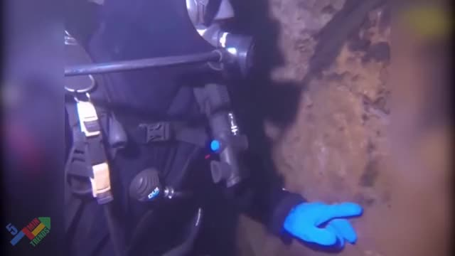 Watch and share Scuba Diving GIFs and Prank GIFs by GlobalSweet on Gfycat