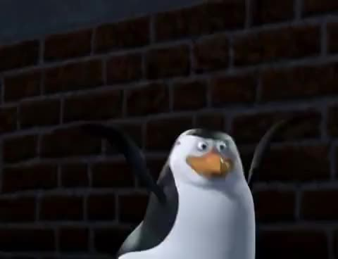 Watch and share Madagascar GIFs and Penguins GIFs on Gfycat