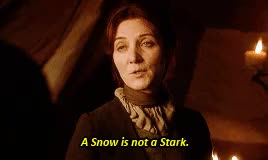 Watch ASOIAF GIF on Gfycat. Discover more Michelle Fairley, a song of ice and fire, asoiaf, asoiafedit, asos, by nat, catelyn tully, gif, original, robb stark GIFs on Gfycat